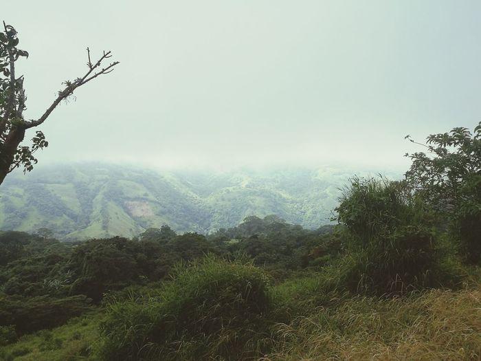 Montes de Oro,