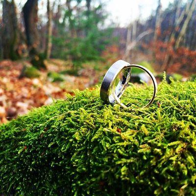 🍁 Promenade en forêt avec mon mari - bientôt un an de mariage 🍂😝 Petite séance photo improvisée 🍃📷 Woods Wedding Love Autumn Dimanche Ring Cute Instalove