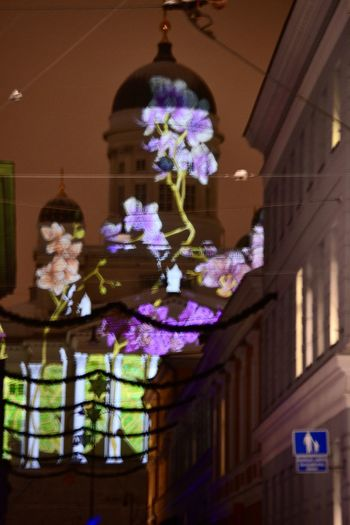 #light #luxhelsinki #Streetart Close Up Close-up Culture Cultures Decoration Flower Focus On Foreground Fragility Freshness Growth Indoors  Leaf No People Ornate Petal Plant Purple Religion Spirituality Vase