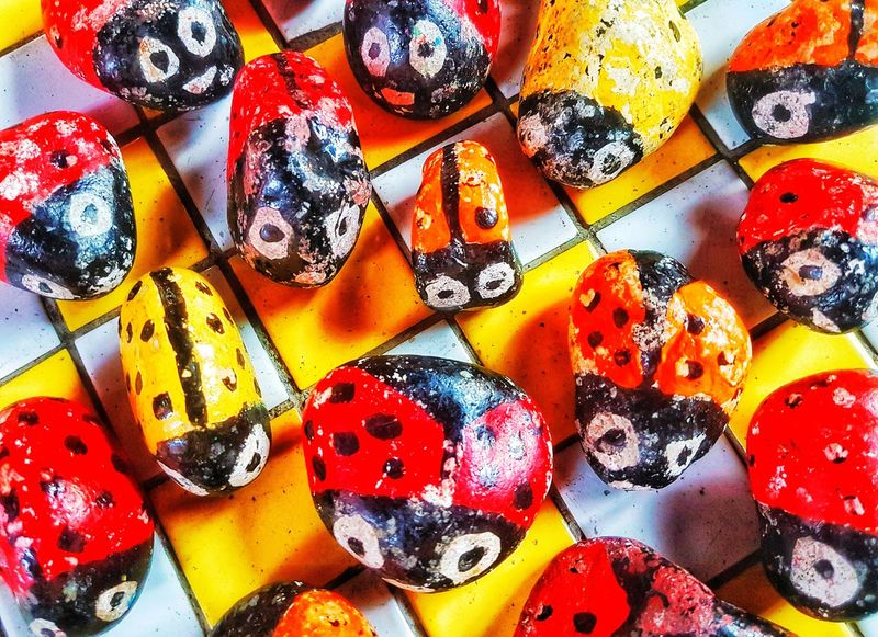 Clise up. Stone groups are decorated with color paintings such as ladybird beetles Multi Colored Backgrounds Full Frame Pattern Textile Variation Sequin Close-up ArtWork Handmade Marbles Butterfly - Insect Symbiotic Relationship Insect Needlecraft Product Seamless Pattern