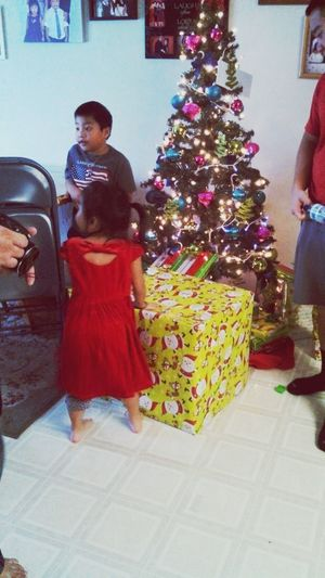 Dao and their Christmas tree!