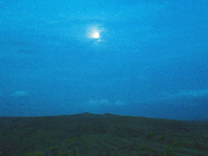 Moon Hills Peek-a-boo