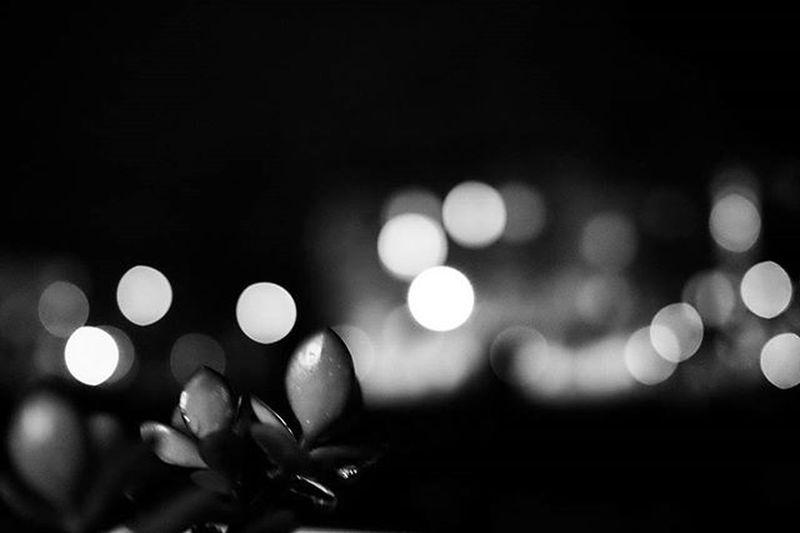 10/01/16 Igparis Ig_paris Natureinthecity Nature City Citylights Lights Bokeh Rsa_bokeh Rsa_nature_bokeh Nb  Noiretblanc Ig_bw Bnw_captures Fujifeed Rsa_bnw Rsa_noiretblanc Bnw_life Igbnw Ig_bnw Monochrome Monochromatic Instablackandwhite Igbw Rsa_monochrome bnw_rose blackandwhite fuji23mmunopix_bnw bw_society