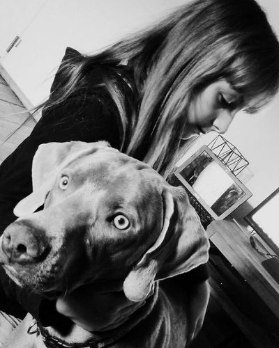 Blackandwhite Dog Kid Love Moment Animals
