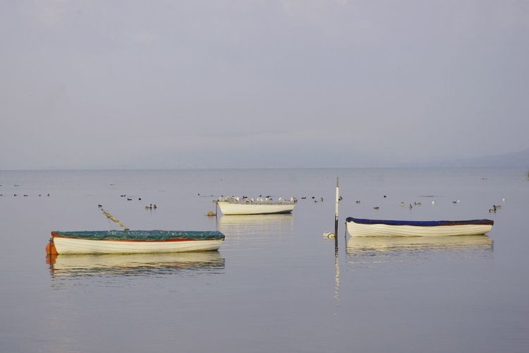 Boat EyeEm Horizon Over Water No People Tranquil Scene Tranquility Water