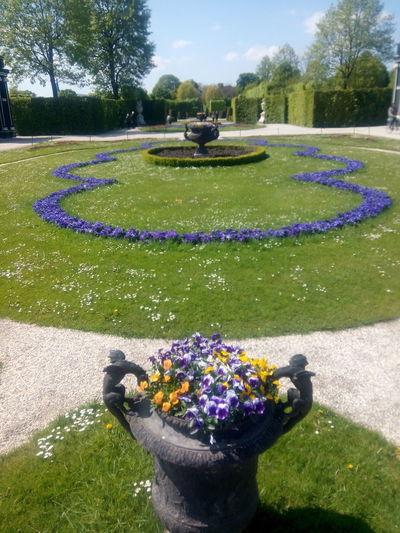 Garden Castle Shönbrunn Flowers Nature