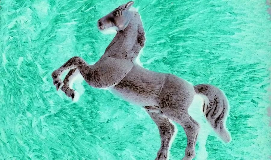 Royal Horse Animal Themes No People Horse Animal Royal Abstract Wallpaper Backgrounds Full Frame Blue Domestic Animals