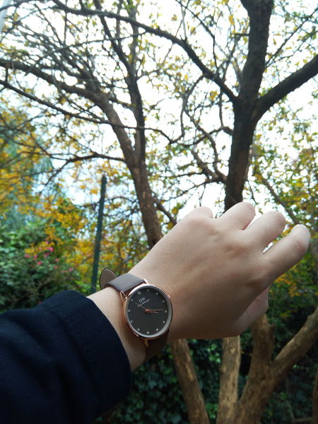 Daniel Wellington watch ⌚😍 FirstEyeEm Eeyemphotos Eeyem Followers Algiers Algeria. Eeyem Photography Love Photography💗📷 EeyemBestEdits FirstEyeEmPic Nature Makes Me Smile First Eyeem Photos First Eyeem Photo Eeyem And Gety Beauty In Nature EeYem Best Shots Enjoying The Moment EeyemBestPhotography Beautyineverything First Picture Lifestyles Freshness Photography Eeyem Nature Lover Eeyemgallery Real People Nature