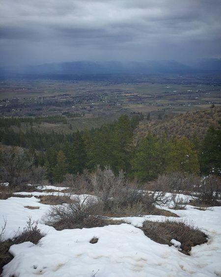 Spring at manastash ridge Nature