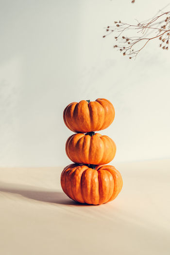 Tiny pumpkins as minimal autumn concept with strong shadows. thanksgiving holiday