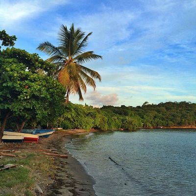 Islandlivity Islandlife Grenada Theblueislands Thebestpicsoftheearth Pr_landscapes People_in_bl Caribbean_beautiful_landscapes Hdr_dominicanrepublic Hdr_beautiful_landscapes Hdrsupreme Earth_captures
