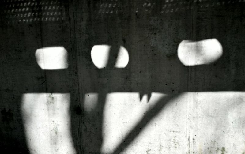 hidden in the courtyard Light And Shadow Monster Street Photography The Illuminator - 2014 EyeEm Awards