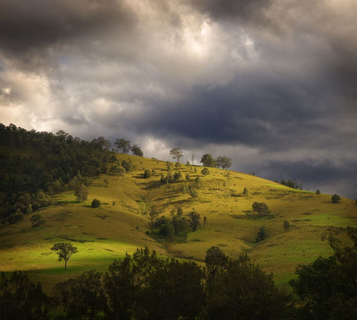 Agriculture Architecture Australian Landscape Beauty Beauty In Nature Centered Cloud - Sky Country Day Dramatic Green Landscape Light Beams Light Rays Light Splash Nature No People Outdoors Rain Clouds Rural Rural Australia Sky Square Travel Destinations Trees And Sky Miles Away