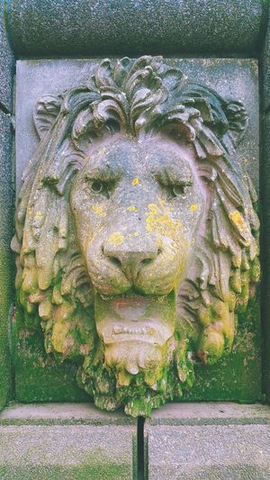 At Low Tide this Carvings In Stone can be seen of a Lion's Head on the inner walls of the River Thames. London Lifestyle Stone Art Stone Carving Moss Covered Stone Art Moss Covered Covered In Moss Postcode Postcards