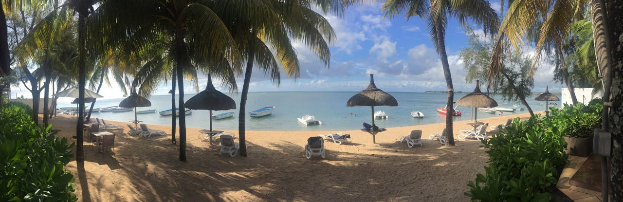 Palm Tree Sea Beach Vacations Tree Tropical Climate Tourist Resort Sunlight Sand Thatched Roof Sky Outdoors Luxury Tree Trunk Cloud - Sky Water Summer