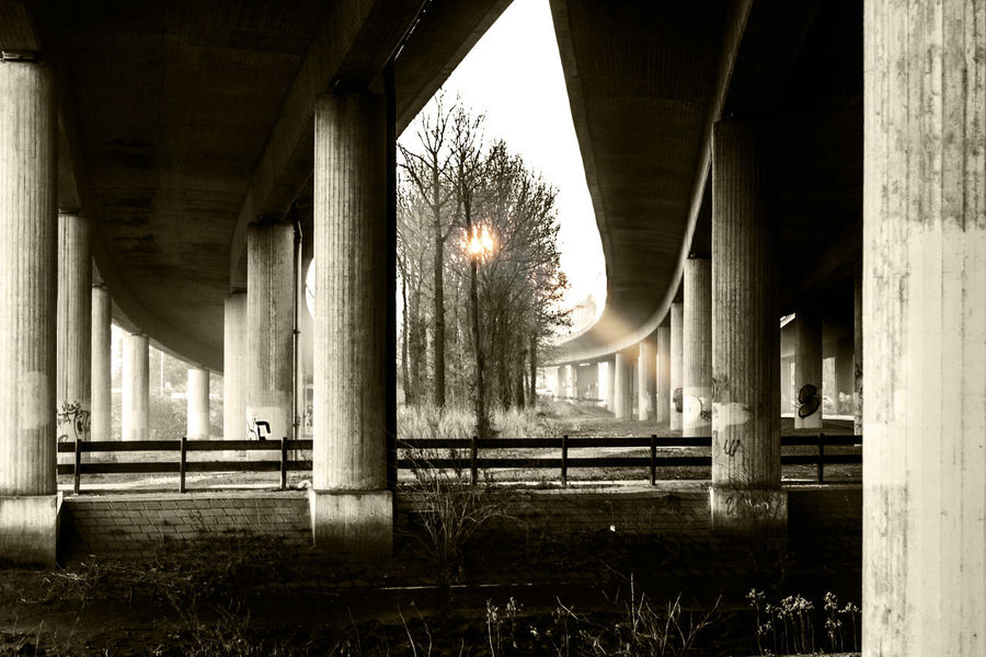 Adapted To The City Architectural Column Architecture Architecture Blackandwhite Bridge Bridge - Man Made Structure Bridges Building Built Structure Cement Concrete Connection Day Light And Shadow Morning Light No People Pillar Sun Sunset Under The Bridge