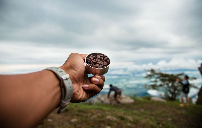 Cropped hand of woman holding roasted coffee beans against cloudy sky