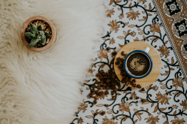 Cactus Espresso Morning Coffee Coffee - Drink Coffee Beans Coffee Cup Cup Design Directly Above Floral Pattern Fur High Angle View Indoors  Interior Morning Rituals No People Pattern Style