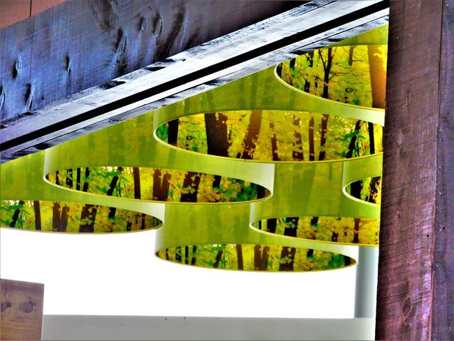 Abstractions In Colors Architecture Close-up Day Green Color Nature No People Outdoors