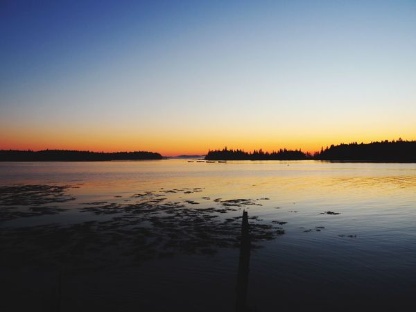Maine Deer Isle Water Sky Scenics - Nature Tranquility Beauty In Nature Tranquil Scene Sunset Reflection Clear Sky Copy Space Waterfront
