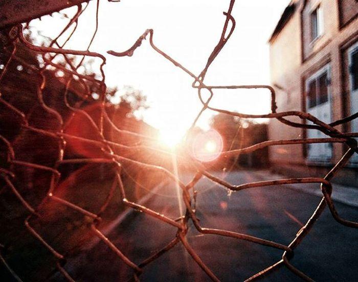 Come back Sun Vscoua Fence Sunshine Vscomoments First Eyeem Photo Sunset Shine Light Sky Summer