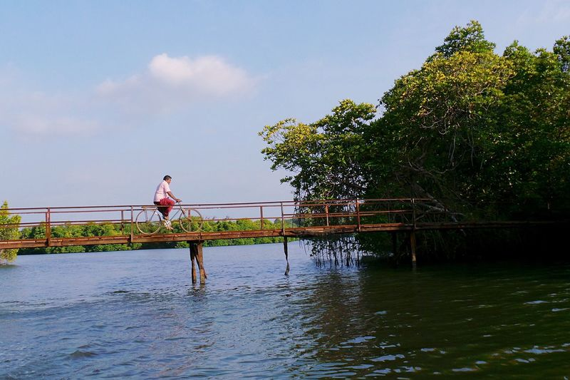 Colour Of Life EyeEm Masterclass The EyeEm Facebook Cover Challenge EyeEm Best Shots Travel Photography Open Edit SriLanka Sri Lanka Bicycle Bridge River Reportage