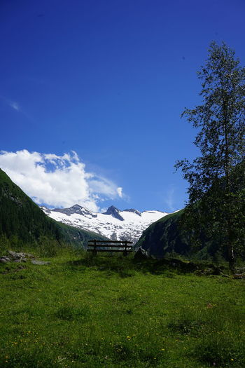 Scenic view of field by mountains against blue sky