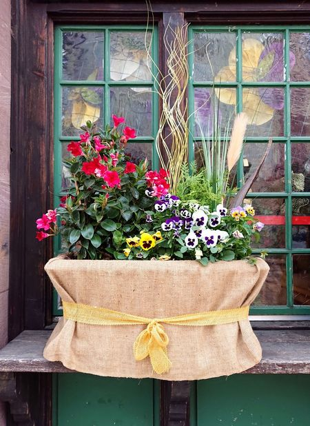 Happy mothers'day 😀 Still Life Mobilephotography Sonyxperiaphotography Flower Window Box Window Architecture Plant Close-up Potted Plant Flower Pot Window Sill Wooden Outside Florist Pot