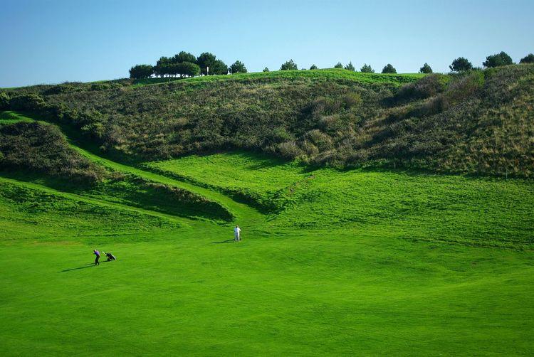 Golf Green Golfing Falaises D'etretat étretat France Landmark