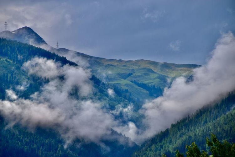 Low angle view of woodland in the mountains with rising fog against sky