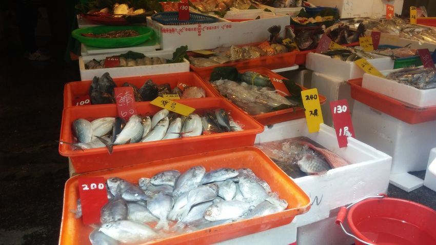 Fish market Choice Day Dead Fısh Fish Food For Sale Freshness High Angle View Ice Indoors  Living Local Market Market No People Plastic Price Tag Ready To Go Red Container Retail  Selling Squid Taipei Taiwanese Taiwanese Style Way Of Life