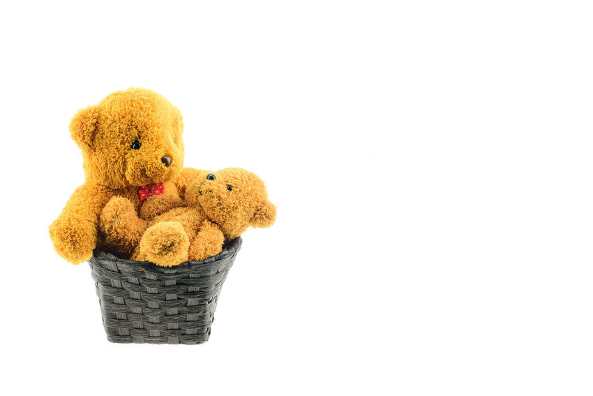 Stuffed Toy Teddy Bear Toy Studio Shot Childhood Cut Out White Background Indoors  Representation Animal Representation Brown Still Life Copy Space Single Object Softness Close-up Toy Animal Cute Stuffed