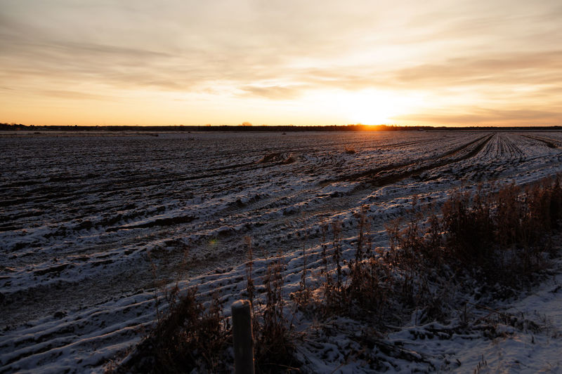 An agricultural field at the beginning of winter