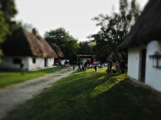 Vilage Museum Szentendre Hungary Architecture Built Structure Building Exterior Tree Grass House Walking Large Group Of People Lawn Togetherness Green Color Travel Destinations Day Sunbeam Outdoors Green Lens Flare Selective Focus Smartphonephotography Smartphone Photos Smartphone Photography Smartphonephotography Smartphoneography Hello World ✌ Architecture_collection