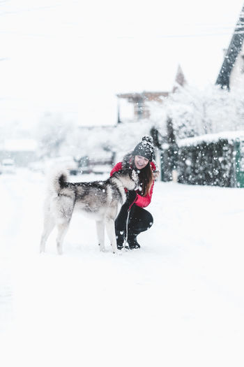 Snow Cold Temperature Winter Mammal Animal Animal Themes Pets Domestic Domestic Animals Canine Dog One Animal Nature Vertebrate Day White Color Warm Clothing Clothing Snowing Outdoors Husky