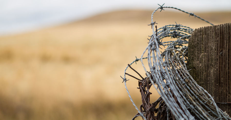 Old fencepost Backgrounds Barbed Wire Close-up Day Fence Focus On Foreground Nature No People Outdoors