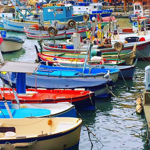 Colur boats 🚤 Italy Genova Colur Nautical Vessel Water Moored Transportation Day Sea Reflection Rowboat Fishing Boat Multi Colored Sunlight