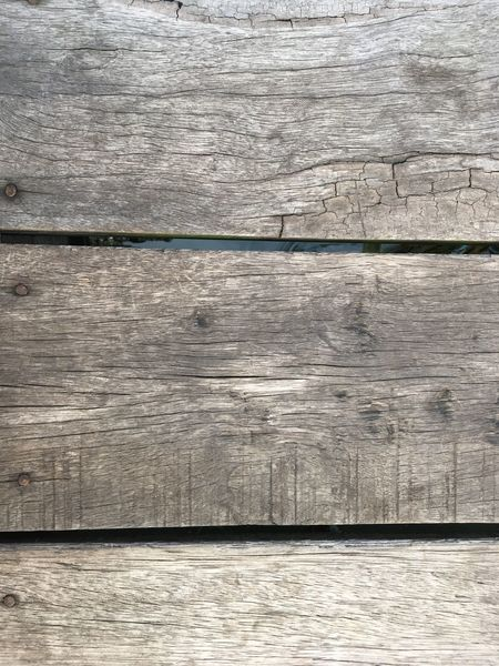 Wood - Material Backgrounds Textured  No People Nature Close-up Outdoors Day Wood Texture Background Textures Wallpaper Beauty In Nature Nature Photography Wallpaper Of The Day