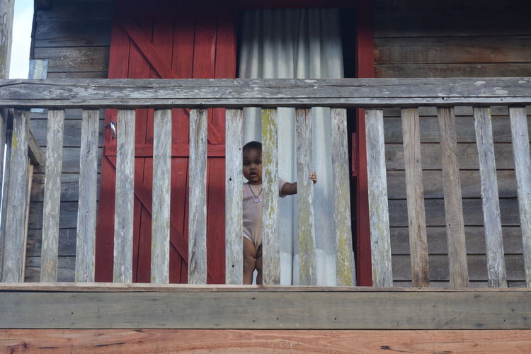 Shy Kid Movement Terrace Hide Kid Madagascar