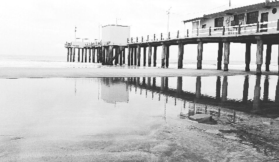 Love The Sea The Coast Beach Reflexions EyeEm Best Shots Black & White Shells Dock