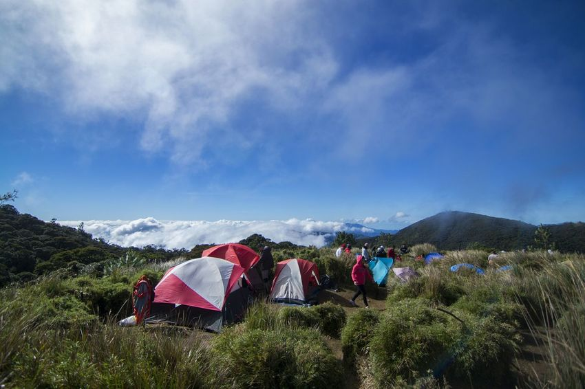 @ Camp 2, Mt. Pulag. No People Hanging Multi Colored Sky Outdoors Holiday - Event Day Nature Flag Sea Of clouds Clouds Beauty In Nature Nature Hiking Mountaineering Pinoy Mountaineer Nikon D3100 EyeEmNewHere Eyeem Philippines