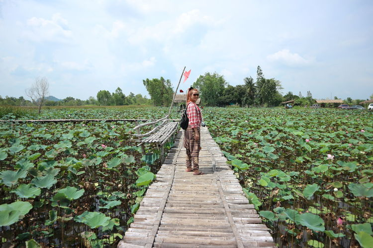 Portrait of woman standing on wooden bridge at lotus farm
