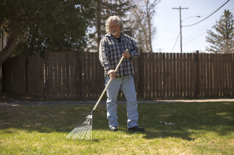Horizontal image of man raking in the yard on a sunny day. Adult Adults Only Casual Clothing Cleaning Day Farm Farming Full Length Gardening Gardening Equipment Grass Holding Lifestyles Mature Adult One Man Only One Person Only Men Outdoors People Rake Raking Real People Standing Sweeping Tree Investing In Quality Of Life