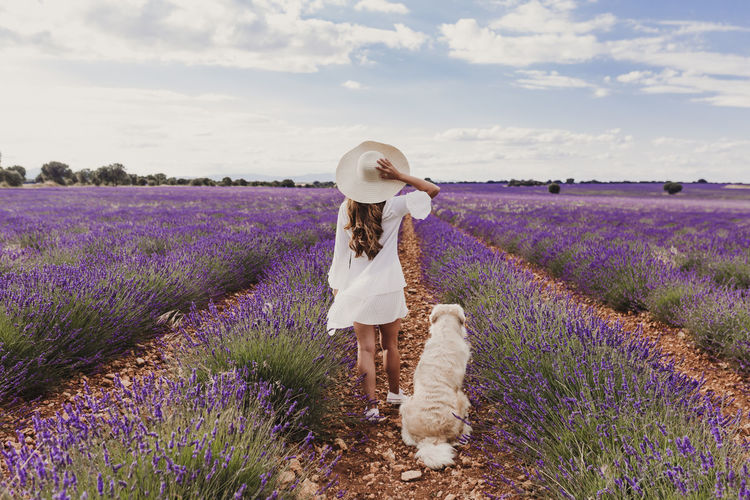 beautiful woman with her golden retriever dog in lavender fields at sunset. Pets outdoors and lifestyle. Back view Meadow Beauty Leisure Freedom Field Dress Care Smile Beautiful Summer Lavender Purple Flower Enjoying Romantic Girl Walking Floral Color Happiness Natural Woman Cheerful Violet Lifestyles Sunny Bloom Green Passion Positivity Nature Young Relax Friends Expressing Travel Tenderness Happy Outdoors Harmony Relaxation Owner Love Lifestyle Caucasian Outdoor Golden Retriever Hug Pet Back View