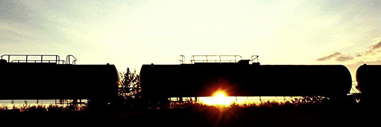 Open Edit Randomness Sunlight! Urban Reflections Railart Train Cars
