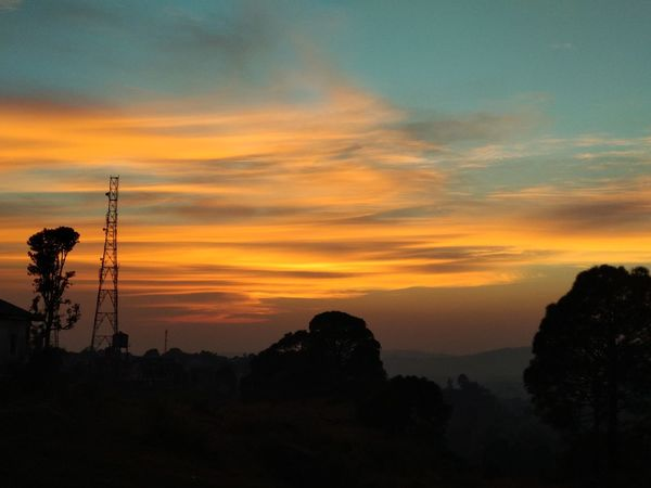 Some ending's are beautiful Himalayas Beauty In Nature Cloud - Sky Day Electricity Pylon Himachalpradesh Landscape Nature No People Orange Color Outdoors Palampur Scenics Silhouette Sky Sunset Tranquil Scene Tranquility Tree