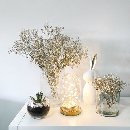 Home decor Relax Happy Flowers Plants And Flowers Light And Shadow Lights House Decoration Minimal The White Project White Background Glass Dome Succulents Baby Breath Easter Bunny Easter Minimal Home Decor Home Decor Fairy Lights Table Indoors  No People Vase Tree Flower Christmas Decoration Day