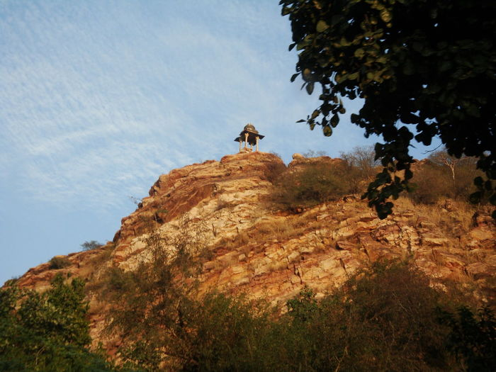 Low angle view of horse on rock against sky