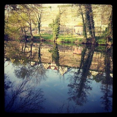 Frühlingstag an der Enz in Besigheim