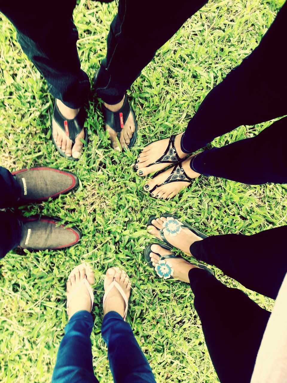 grass, low section, human leg, togetherness, standing, real people, day, men, friendship, human body part, outdoors, nature, people